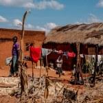 Aby powstrzymać ebolę, Afryka musi współdziałać