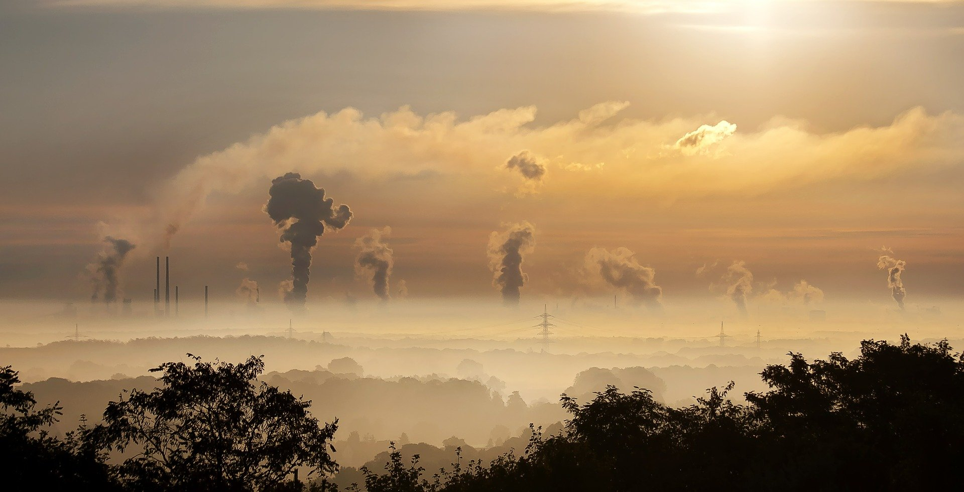 ekologia a pandemia